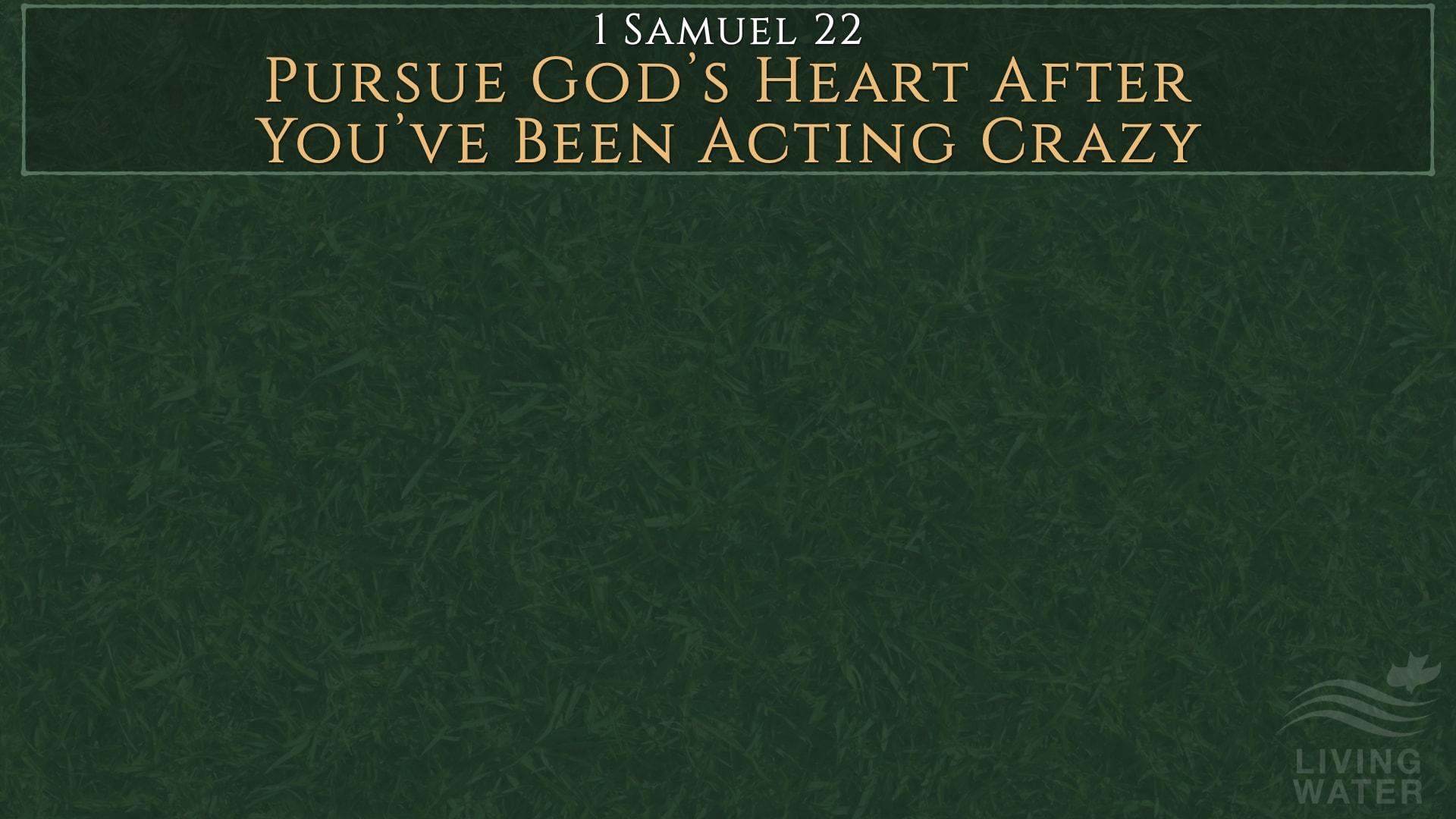 1 Samuel 22, Pursue God's Heart After You've Been Acting Crazy