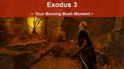 Exodus 3, Your Burning Bush Moment with George Sedota