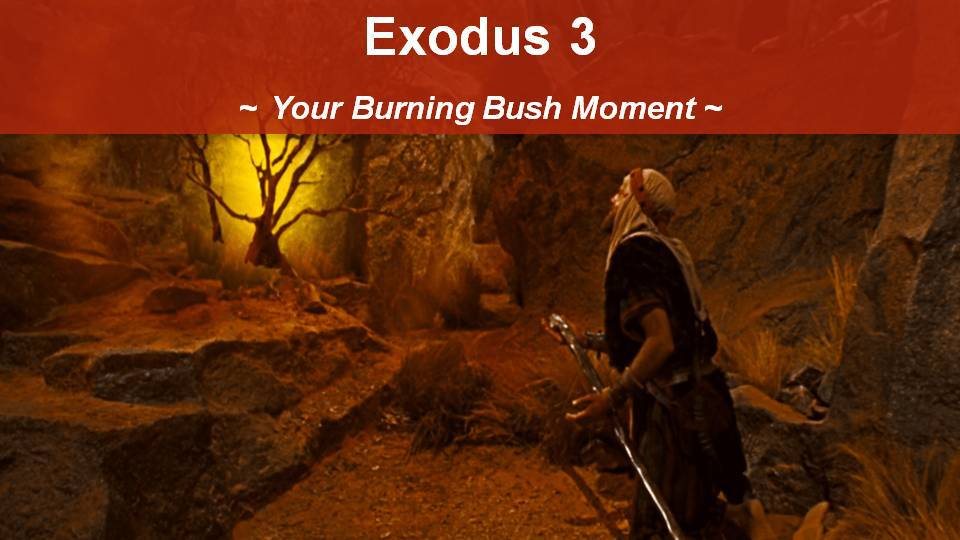 Exodus 3, Your Burning Bush Moment with George Sedota