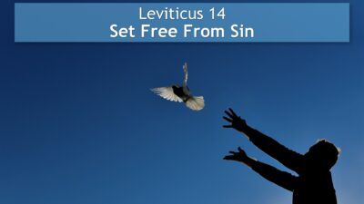 Leviticus 14, Set Free From Sin