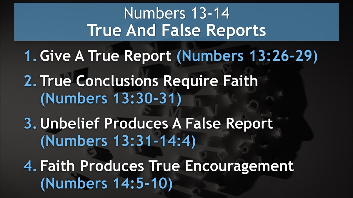 Numbers 13-14, True And False Reports
