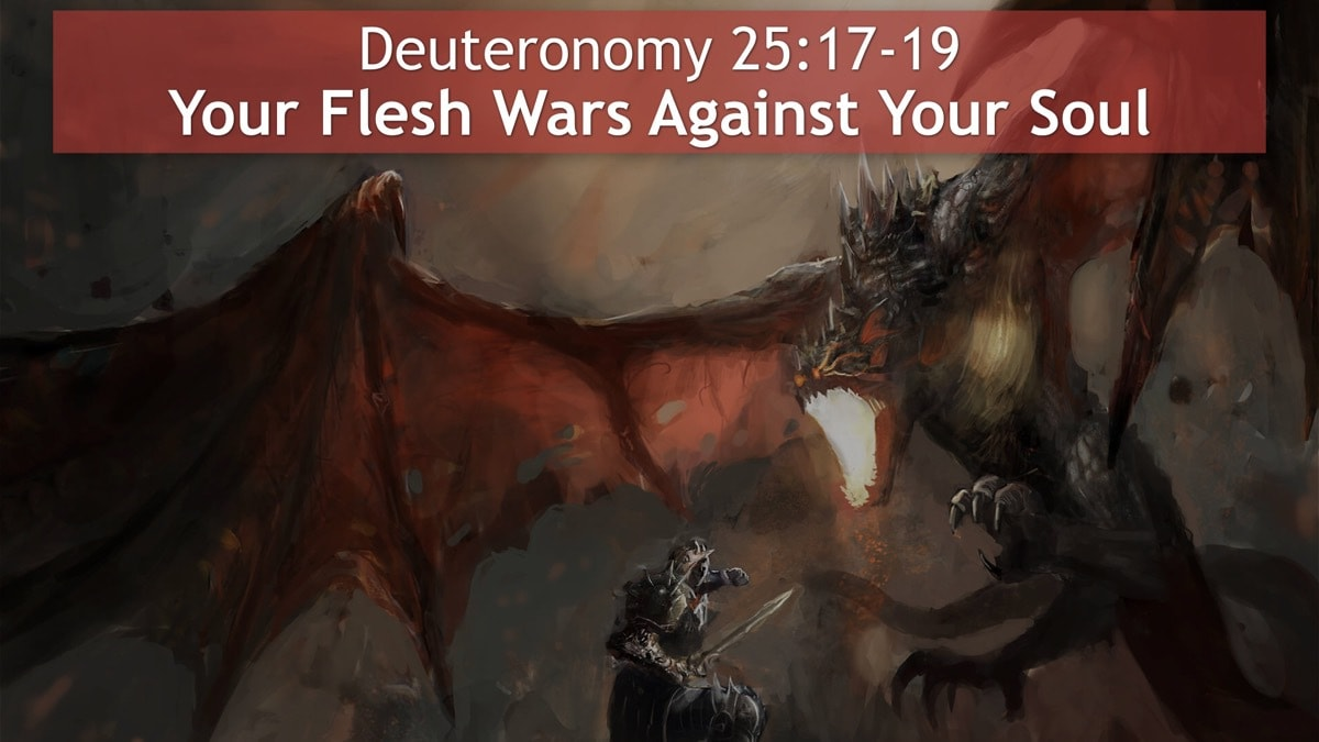 Deuteronomy 25, Your Flesh Wars Against Your Soul