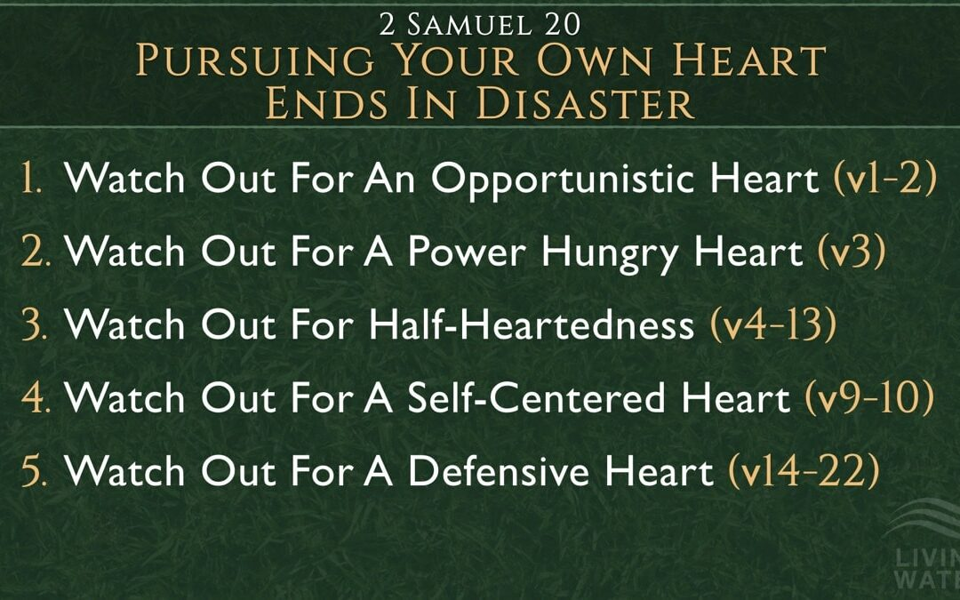 2 Samuel 20, Pursuing Your Own Heart Ends In Disaster