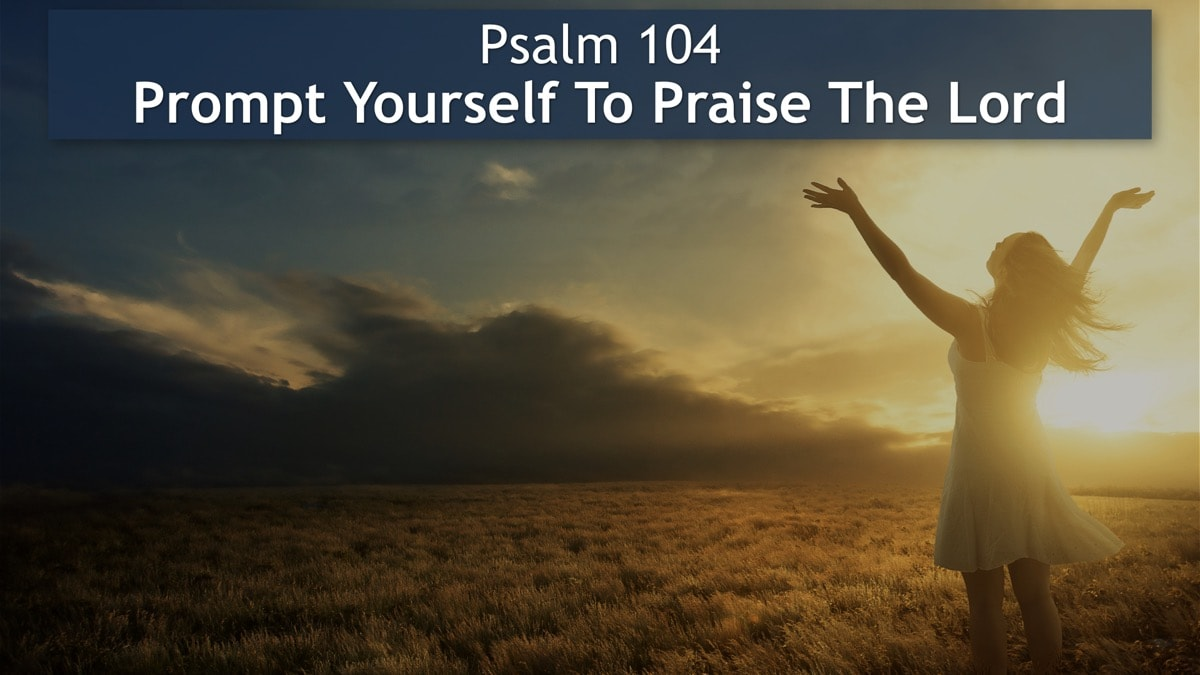 Psalm 104, Prompt Yourself To Praise The Lord