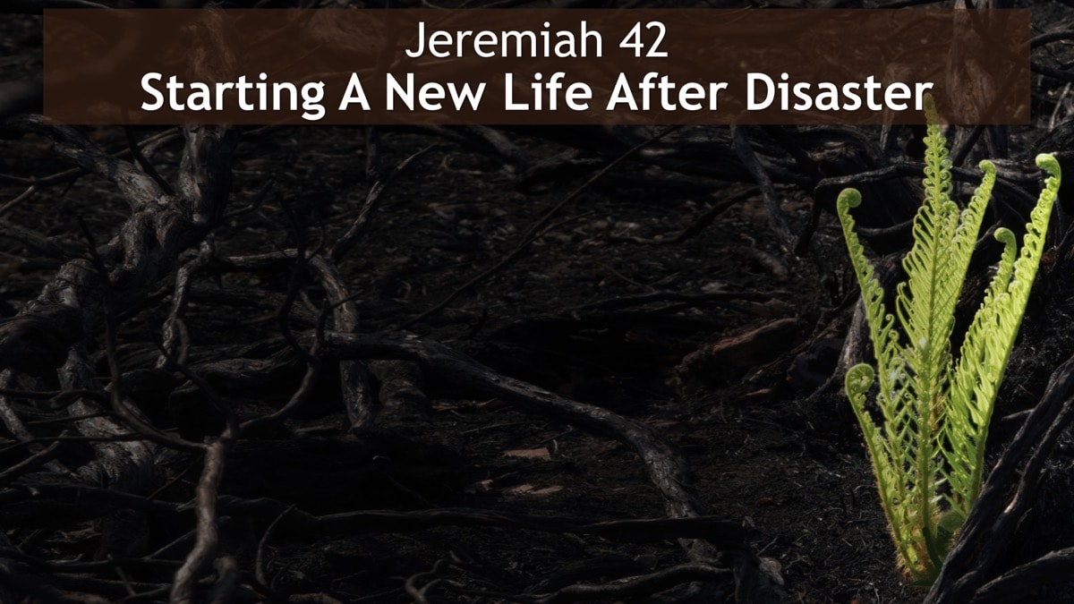 Jeremiah 42, Starting A New Life After Disaster