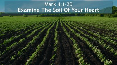 Mark 4:1-20, Examine The Soil Of Your Heart