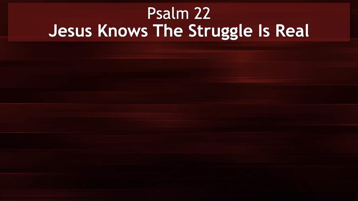 Psalm 22, Jesus Knows The Struggle Is Real