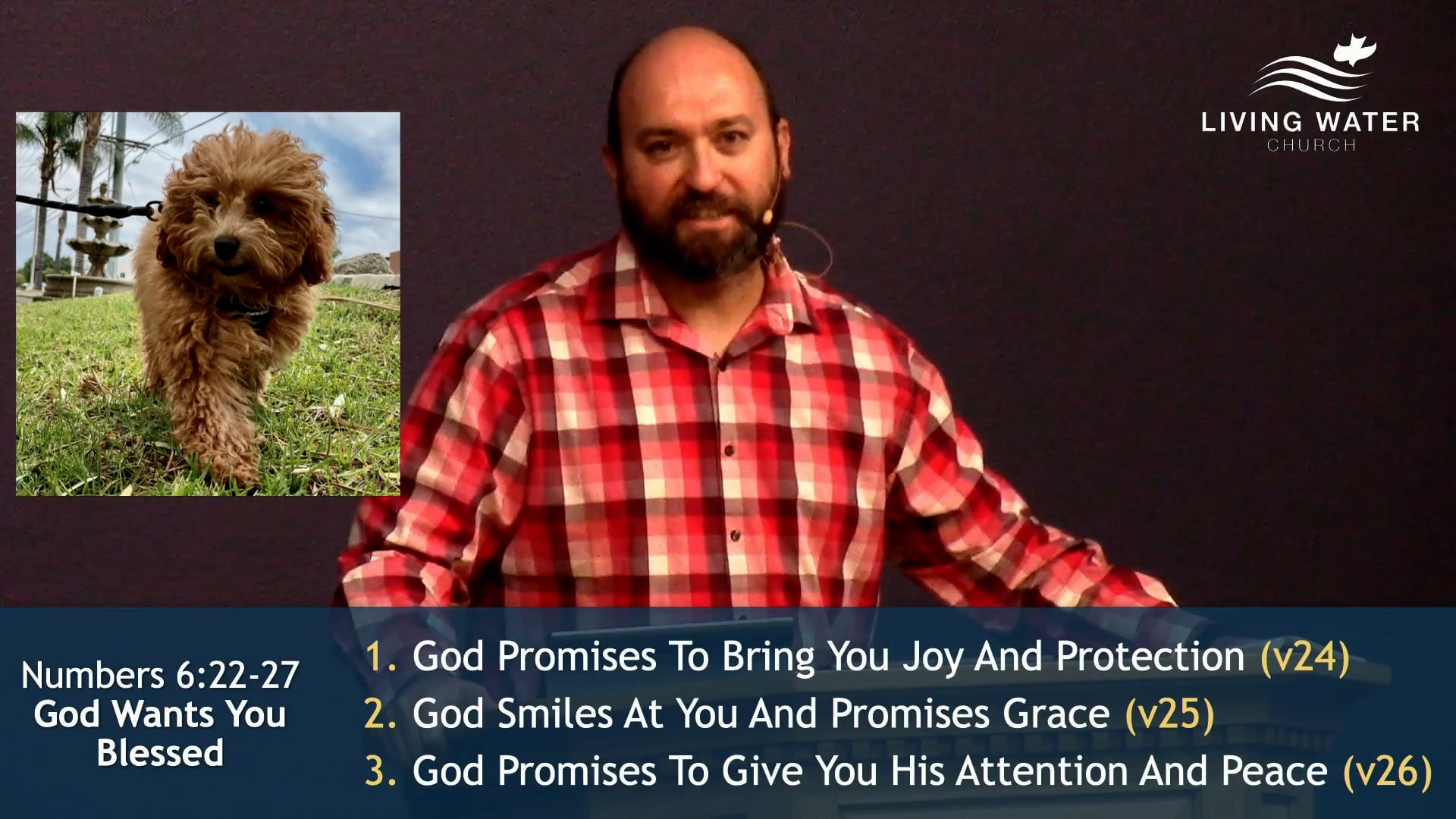 Numbers 6, God Wants You Blessed